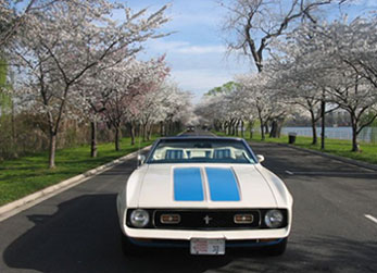 1972 Mustang at the Cherry Blossom Festival