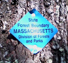 A marker nailed to a tree along the Conn.-Mass. state line trail north of the Tri-State Marker.